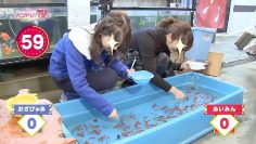 Goldfish fishing with the Toyama Sisters!