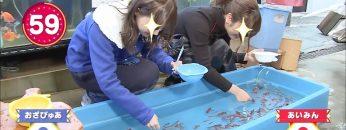 Goldfish fishing with the Toyama Sisters!